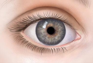 home_vision_treatment6